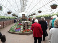 Bauer-Hillis Steps Ahead to see the Spring Flower Show at Phipps Conservatory